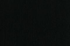Briggs-Anthracite-fsc