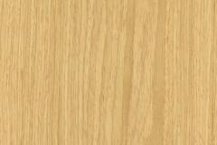 Swatch-Oak