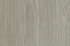 Accent-Driftwood