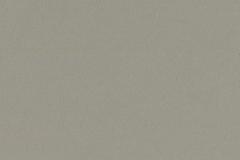Oyster-Grey-Matt