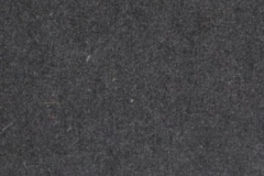 Forescolor-Black-min