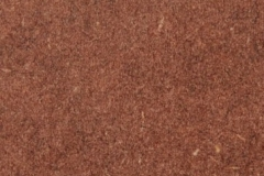 Forescolor-Brown-min