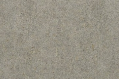 Forescolor-Light-Grey-min
