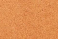 Forescolor-Orange-min