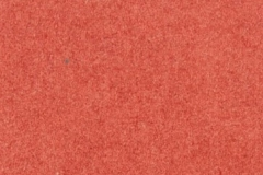 Forescolor-Red-min