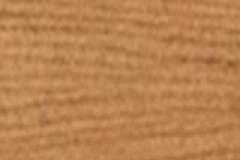 Sahara-Brush