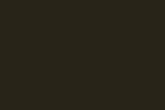 N105-Noir-Absolu_Roche