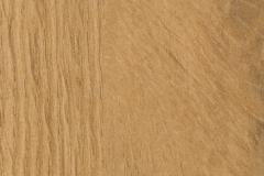 Forest-Oak