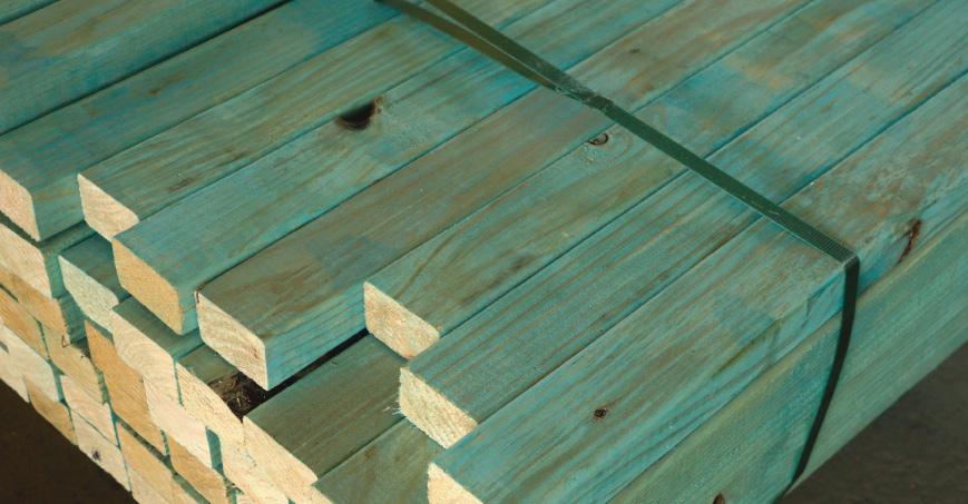 Blue-Pine-H2