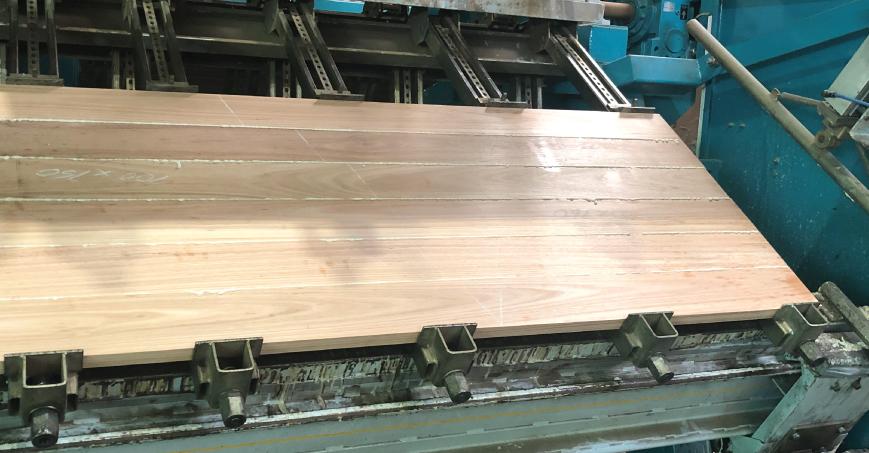 American Oak Benchtop being glued.